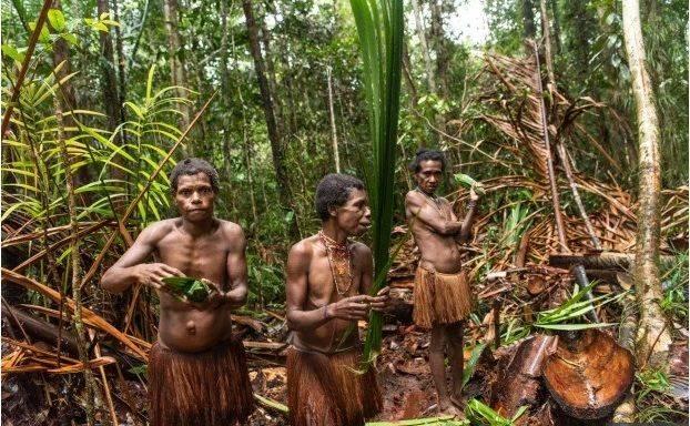 Suku Kanibal Terakhir Di Dunia Hidup Damai Di Papua