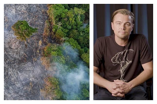 ▲李奧納多狄卡皮歐大動作支援亞馬遜熱帶雨林火災,捐出 1.6 億台幣基金。(合成圖/取自 Leonardo DiCaprio 臉書、 IG )