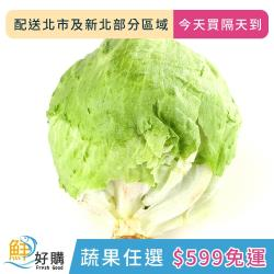 【鮮好購X蔬果任選$599免運】美生菜600g±10g/包