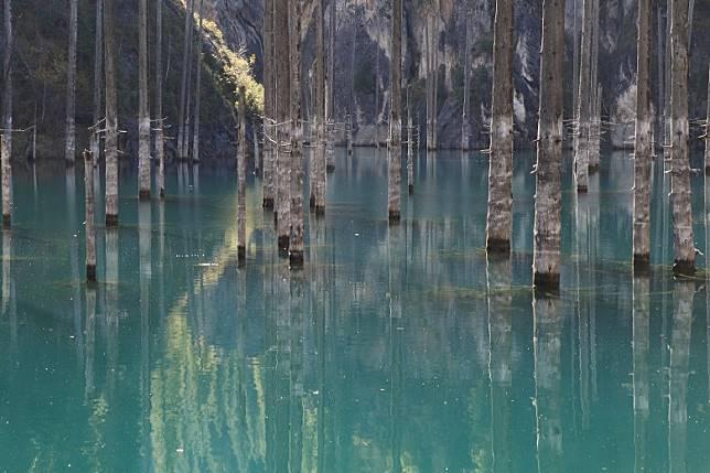Lake Kaindy雖於哈薩克語意思是樺樹,但湖中所見的其實是雲杉。(互聯網)