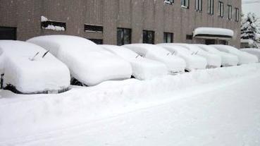 北海道的冬天二三事