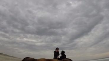 感人求婚影片 攝影師居然是自家愛犬!