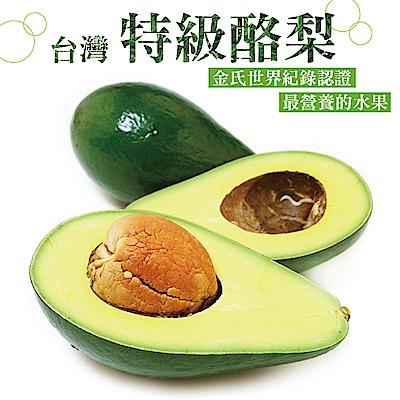 【愛上水果】台灣特級酪梨*1箱(12-15顆/10台斤/箱)