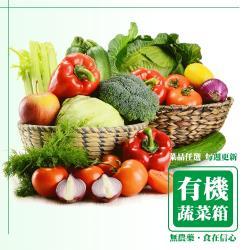 12入組合 信心有機蔬菜箱 新鮮冷藏產地直送