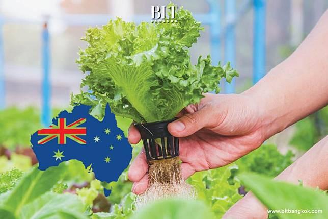 ธุรกิจออร์แกนิคของ SMEs ไทยเริ่มมีหวัง หลังชาวออสเตรเลียกว่า 67 % ต้องการซื้อสินค้าเพิ่ม