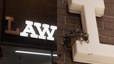 日本超商 Lawson 招牌 L 字首突然不亮了 路人好奇心問了店員才發現「背後暖心故事」!