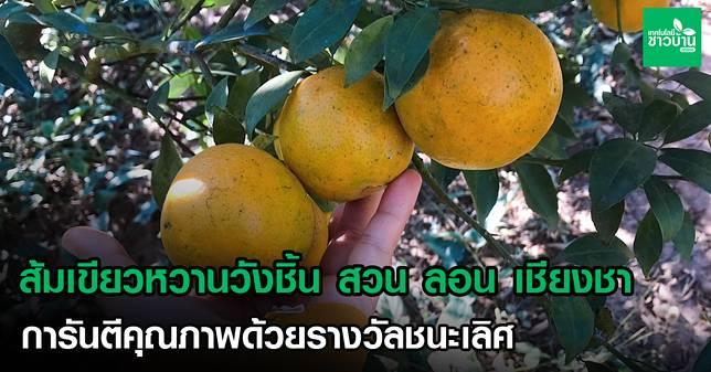17 ส้ม