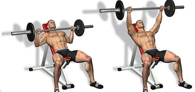 5 Contoh Latihan Superset Untuk Otot Dada