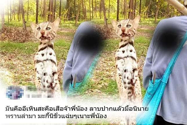 ชาวเน็ตรุมจวกสาวโพสต์โชว์ภาพ 'สัตว์ป่า' เตรียมทำเมนูเด็ด
