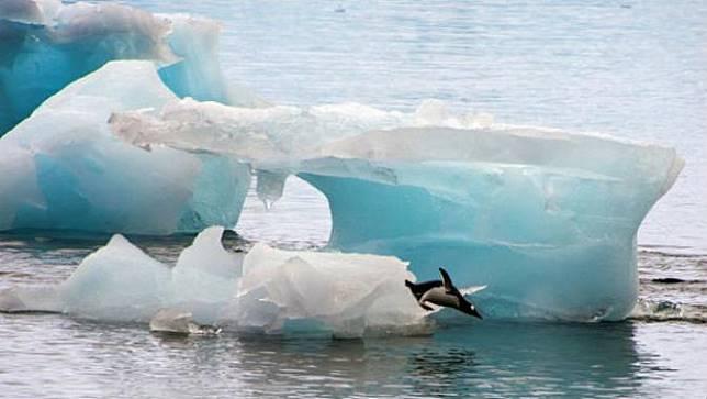 Ancaman Mengerikan Bila Es di Antarktika Terus Mencair