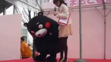 日本紅遍半片天! 《 熊本熊爆笑動圖 》 網友:怎麼可以蠢的這麼可愛?