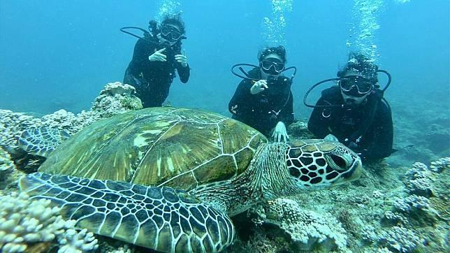 小琉球水上活動推薦-小琉球潛水體驗