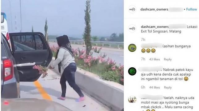 Aksi emak-emak yang cabut bunga di tol Malang.[Instagram/Dashcam_Owners_Indonesia]