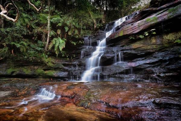 Rekomendasi 5 Objek Wisata Alam Anti Mainstream di Gosford, Australia