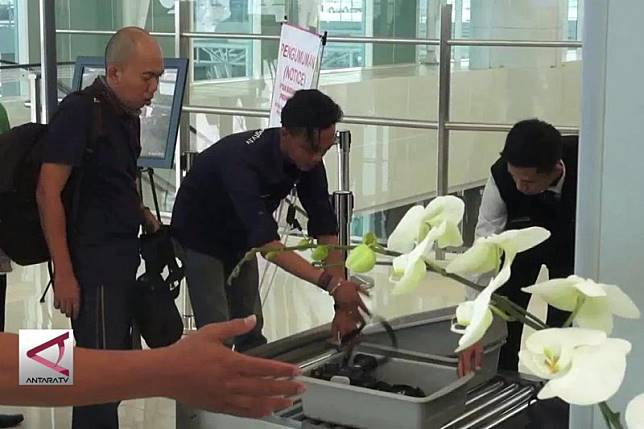 Masyarakat Sambut Gembira Turunnya Harga Tiket Pesawat