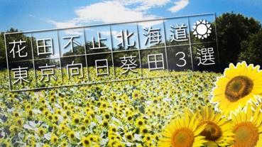 花田不止北海道!東京向日葵田3選