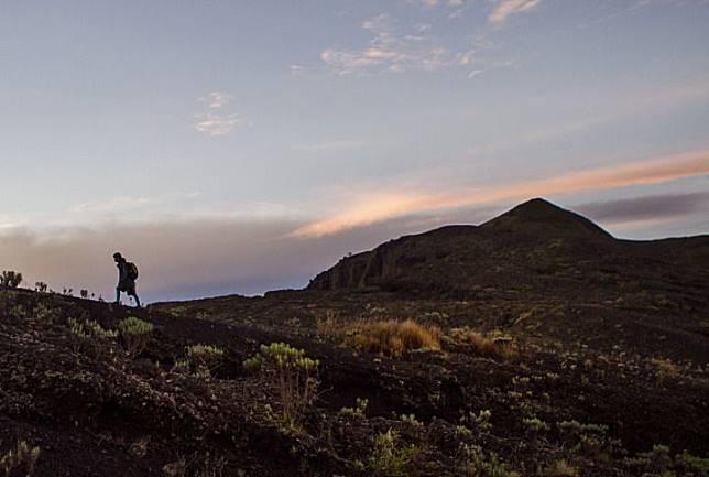 Seorang pendaki menapaki jalur menuju puncak Gunung Tambora dengan ketinggian 2.850 meter.