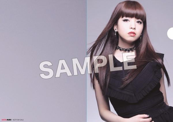 sample_アニメイト_クリアファイル.jpg
