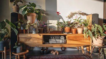 起點部屋 / 讓植物成為家的主角 植物風格師 Yuty「養死植物是必經的過程」