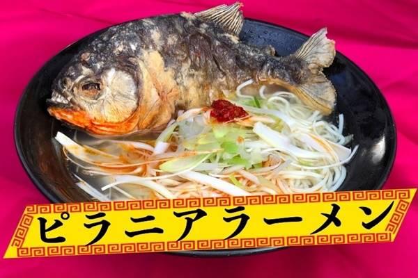 """ครั้งแรกของโลกกับ """"ราเม็งปลาปิรันย่า"""" ที่ญี่ปุ่น!"""