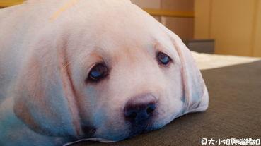 【客製化禮物】Lifetata 抱枕屋 訂製寵物造型枕