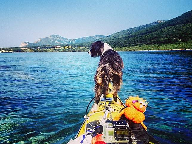 男子划獨木舟橫跨地中海 遇見夢想狗狗加入成為人生「伴旅」