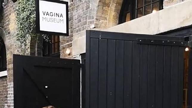 Museum Vagina