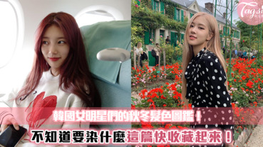 韓國女明星的秋冬髮色特輯這幾個髮色超顯白,決定就染這色迎接聖誕節!