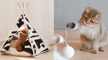 帳篷式睡床、玩具隧道...毛小孩保證愛翻!網友激推「11款寵物居家小物」~還不快把毛小孩寵上天!