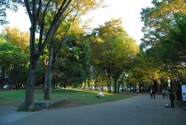 <p><b>上野公園可不是只有公園!</b></p>