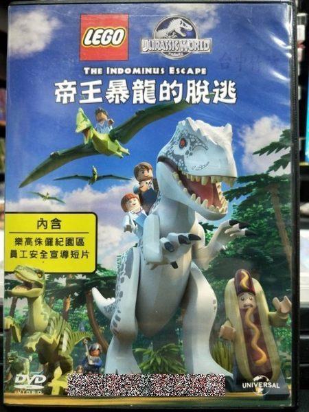 影音專賣店-P03-365-正版DVD-動畫【樂高:帝王暴龍的脫逃】-國語發音 LEGO