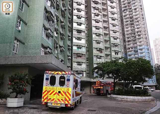 華貴邨老婦墮下倒臥平台,救護車到場戒備。(吳建明攝)