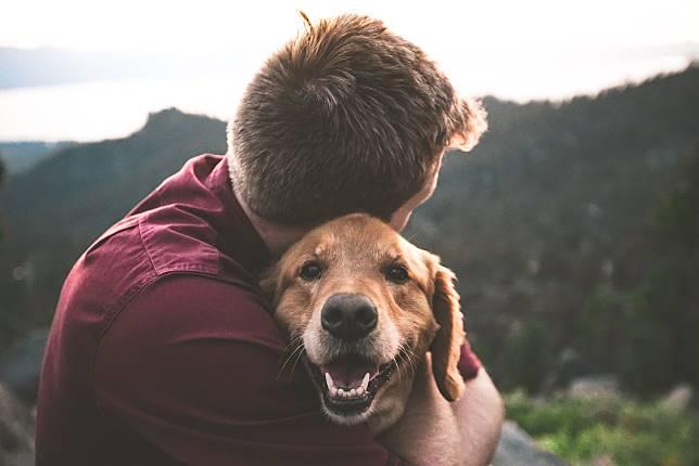 與貓狗互動10分鐘,就已經可以趕走壞情緒。