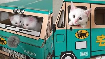 日本宅急便箱子爆紅 主人幫喵星人蓋出超萌的貓屋!