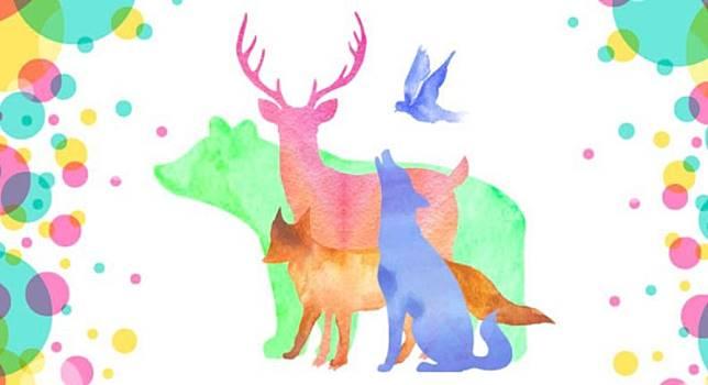 ▲你第一眼看到哪隻動物?選擇將透露真實的你。(圖/翻攝 cocology )