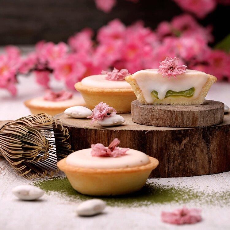 【安普蕾修Sweets】櫻花抹茶白豆起士塔 (10入/盒)|團購 甜點 下午茶 中秋 禮盒 蛋糕 蛋奶素|。人氣店家安普蕾修Sweets的▍人氣起士塔 ▍有最棒的商品。快到日本NO.1的Rakuten