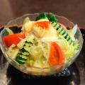 サラダうどん - 実際訪問したユーザーが直接撮影して投稿した西新宿うどん三国一 西口店の写真のメニュー情報