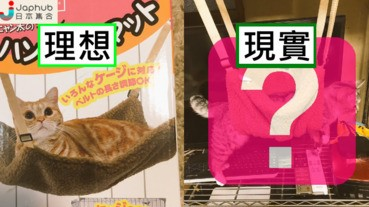 【有片】貓星人專用吊床 理想跟現實可以是相差很遠...