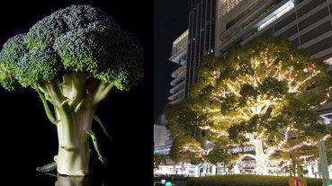 聖誕樹算什麼!日本名古屋車站「發光的花椰菜」大爆紅,意外成為冬季限定的熱門打卡景點