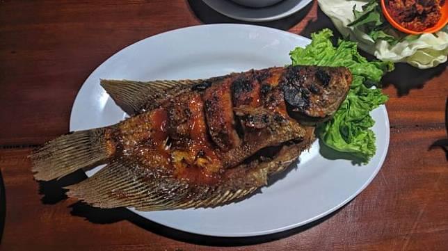 Ilustrasi ikan bakar, ikan gurame bakar. [Shutterstock]
