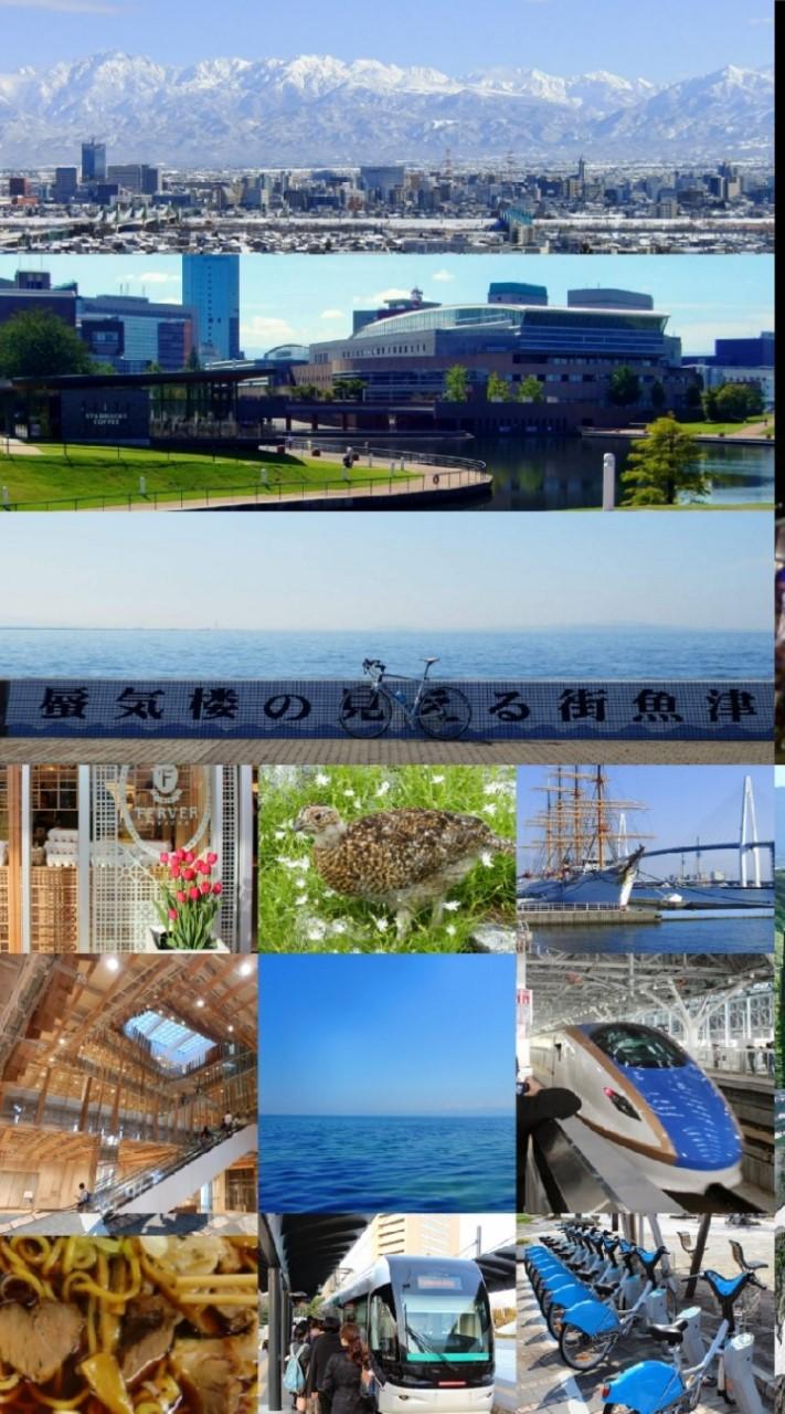 ▲富山県ルーム - Toyama-ken Room