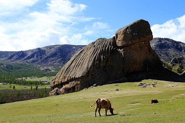 巨龜石形神兼具,是特勒吉國家公園內的著名地標。(互聯網)