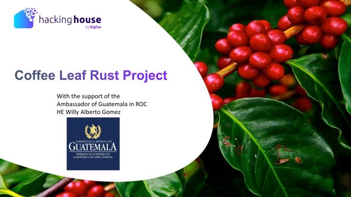 本屆防治葉鏽病的專案由咖啡生產大國瓜地馬拉政府贊助。