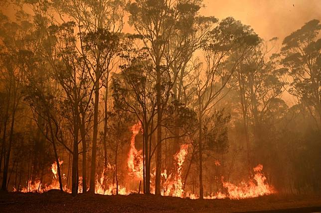 Bush fires, earthquakes, typhoons caused record economic damage in the last decade, Aon report says