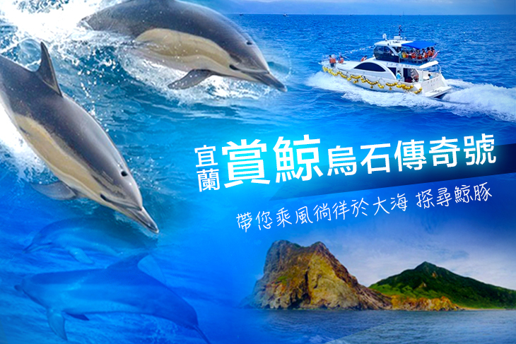 賞鯨/包船專案,帶您乘風徜徉於大海、探尋鯨豚