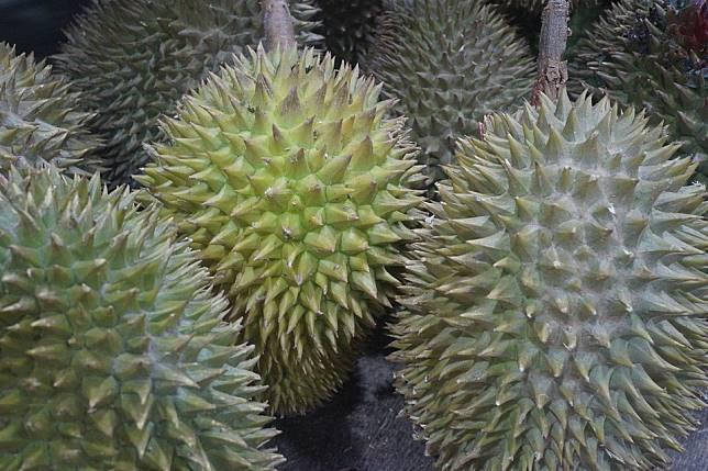 durian-fruit-2720388_960_720