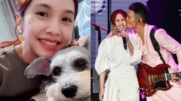 楊丞琳愛犬罹癌,李榮浩「這舉動」超暖,讓粉絲狂喊可以嫁了!