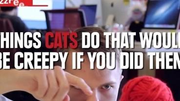 如果貓的行為變成人來做 結果會讓你超想飛踢的!
