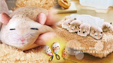 日本YOU+MORE推出可愛倉鼠系列雜貨,五隻倉鼠趴在衛生紙盒上打瞌睡,模樣萌度破表!