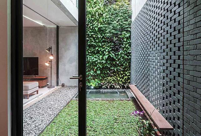Inspirasi Taman Vertikal Sederhana untuk Rumah di Lahan Sempit